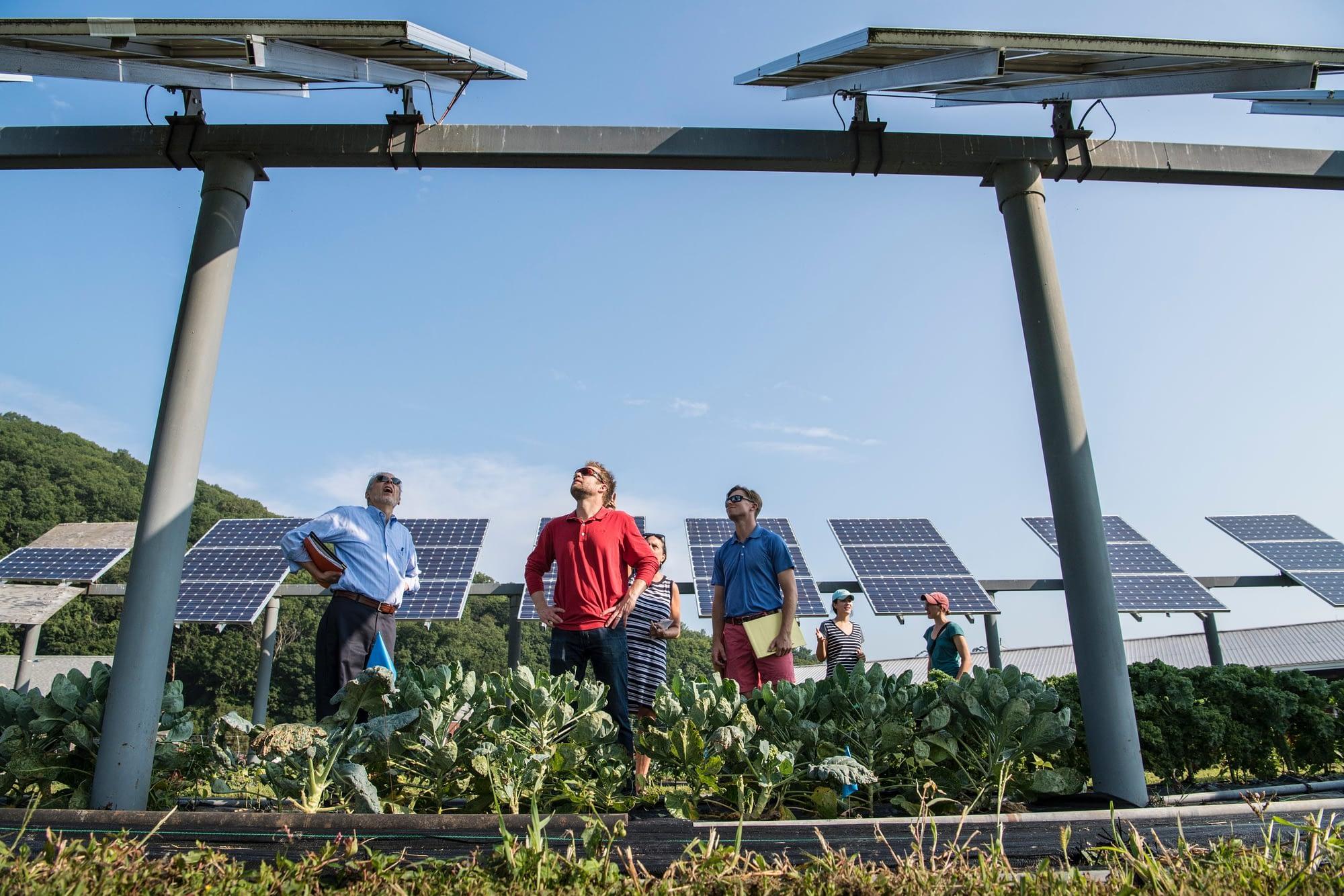 El 50% de la demanda energética se puede conseguir con energías renovables